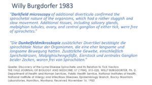 Willy Burgdorfer berichtet über Borrelia burgdorferi